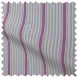 Purple-And-Blue-Stripe-100-Count.jpg